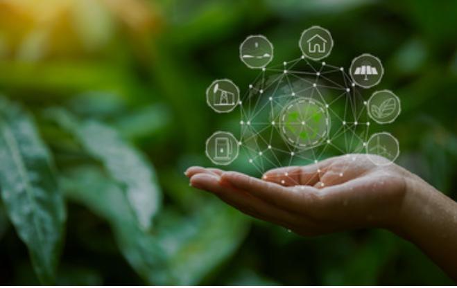 digital écologique